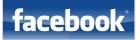 Estrategias Internet en Facebook
